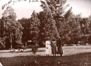 gardens_1903