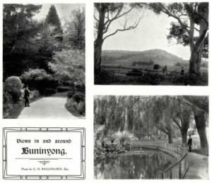 gardens_1910