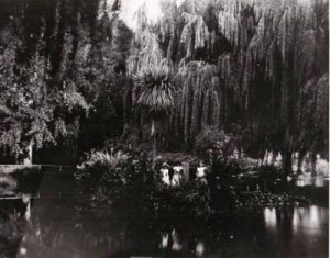 gardens_island_1900s