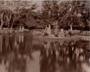 gardens_pond_1907