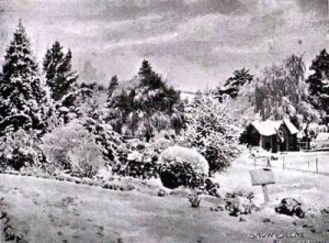gardens_snow_1905